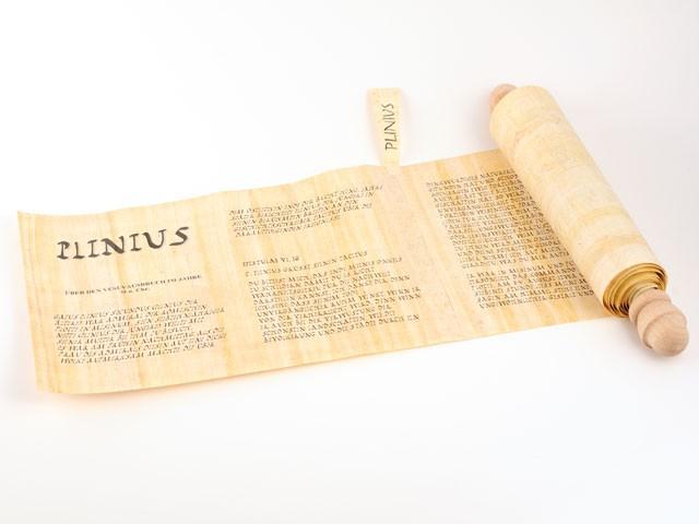 Papyrus Pompeji_d