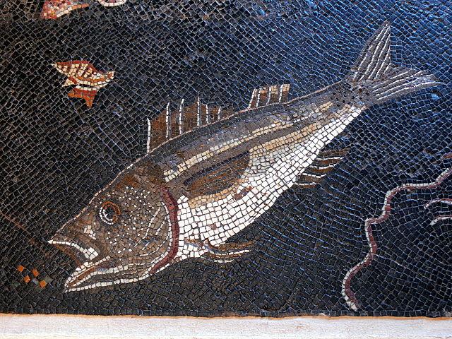 Fisch-Mosaik_Fisch_2
