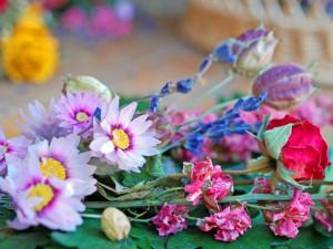 Blüten und Kränze der Römer