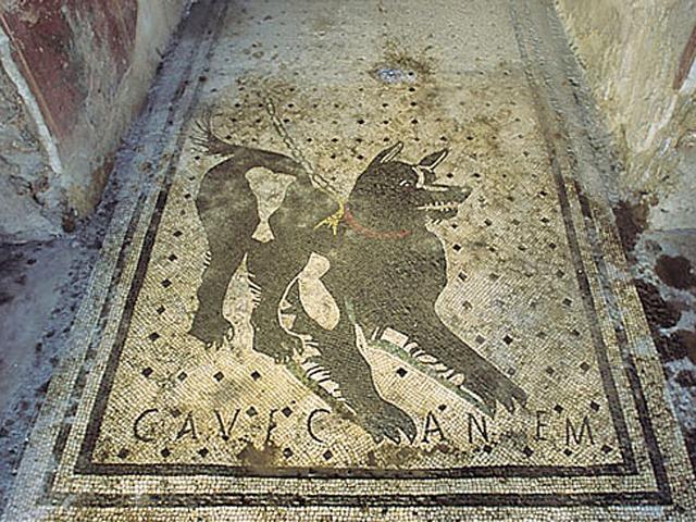Cave Canem Pompei